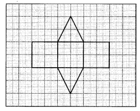 Visualising Solid Shapes NCERT Extra Questions for Class 8 Maths Q7.1