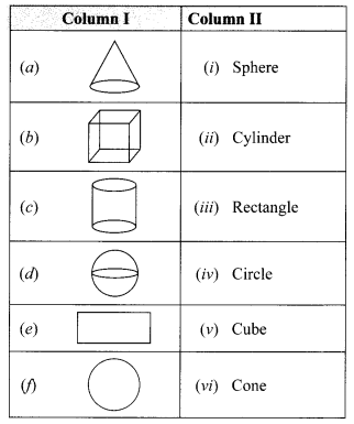 Visualising Solid Shapes NCERT Extra Questions for Class 8 Maths Q9