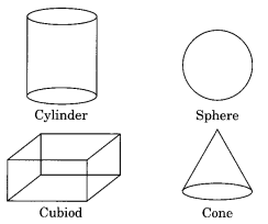 Visualising Solid Shapes NCERT Extra Questions for Class 8 Maths Q1