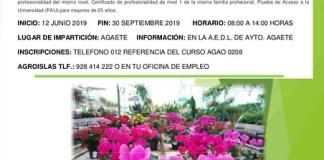 El Ayuntamiento organiza el 'Curso de instalación y mantenimiento de jardines y zonas verdes'