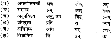 RBSE Solutions for Class 12 Sanskrit विजेत्र Chapter 7 नन्दिनीकथा 8