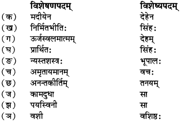 RBSE Solutions for Class 12 Sanskrit विजेत्र Chapter 7 नन्दिनीकथा 11