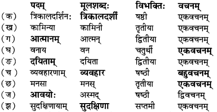 RBSE Solutions for Class 12 Sanskrit विजेत्र Chapter 7 नन्दिनीकथा 4