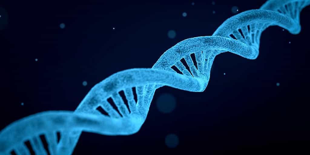 édition-gènes-nouvelle-technique