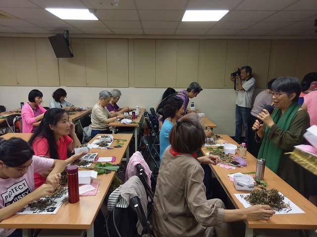 周易數字占卜師李政安先生提供_黃盛璘老師教大家認識香草植物