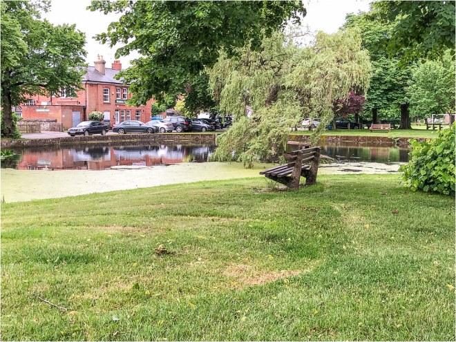 Godstone Pond 13 Jun