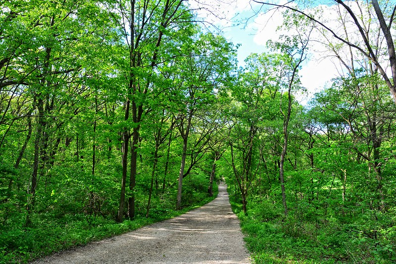 Swallow Cliff Woods