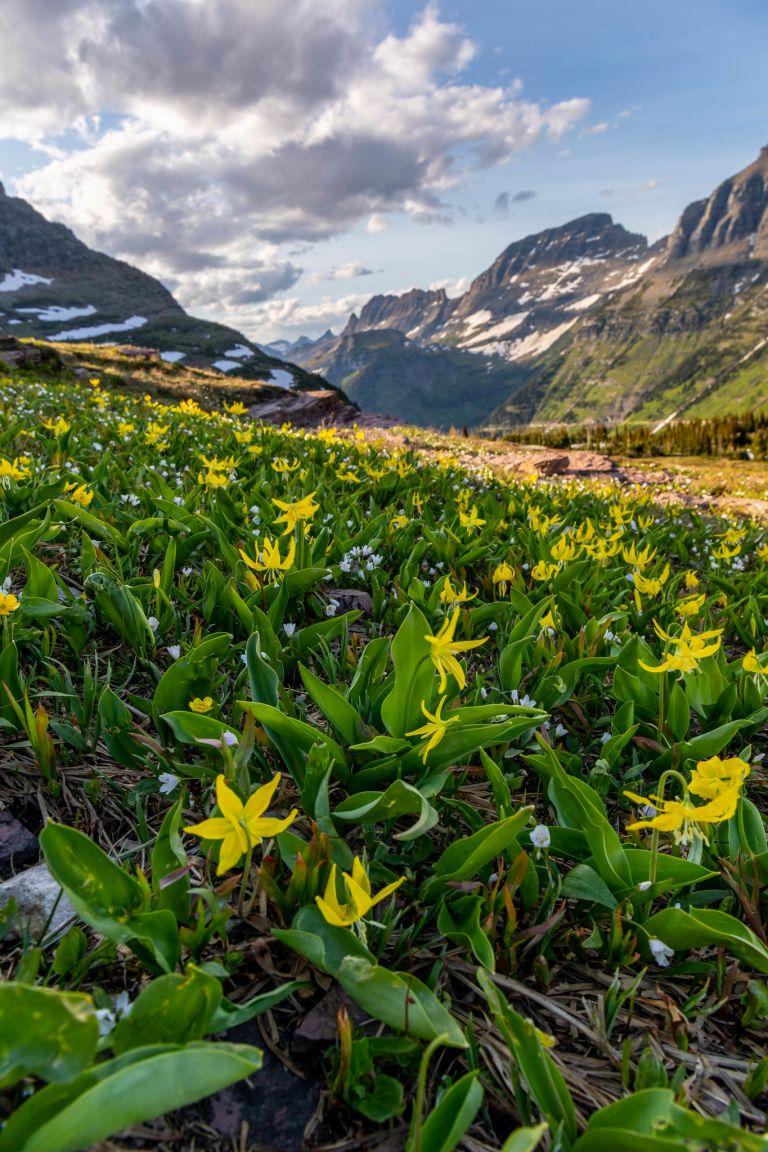 07.01. Glacier National Park