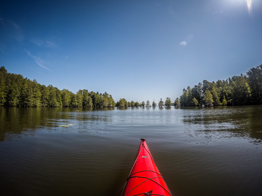 Lake Marion - Ferguson-8