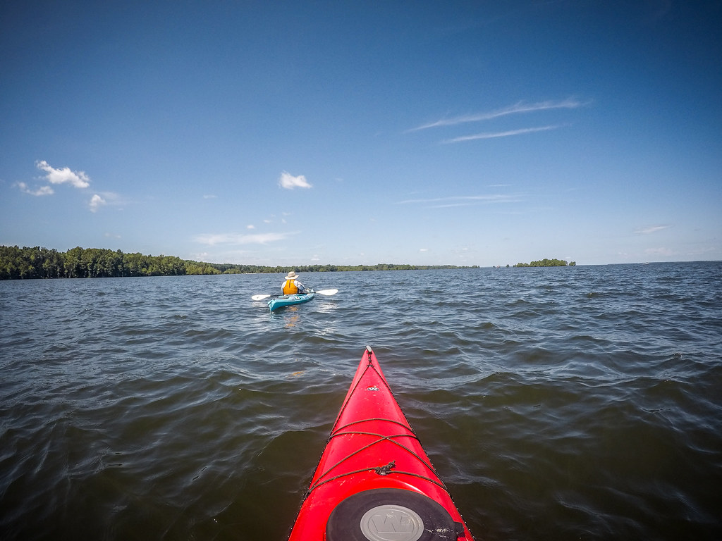 Lake Marion - Ferguson-114