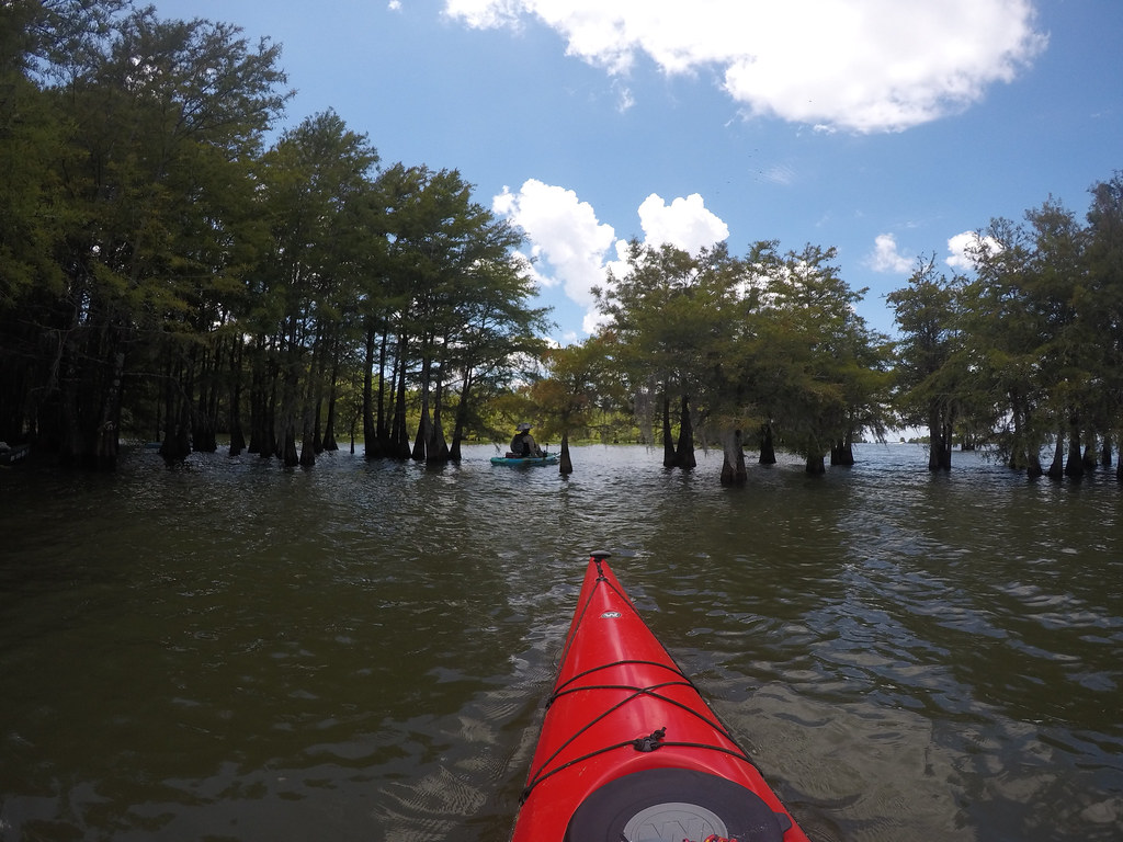 Lake Marion - Ferguson-140