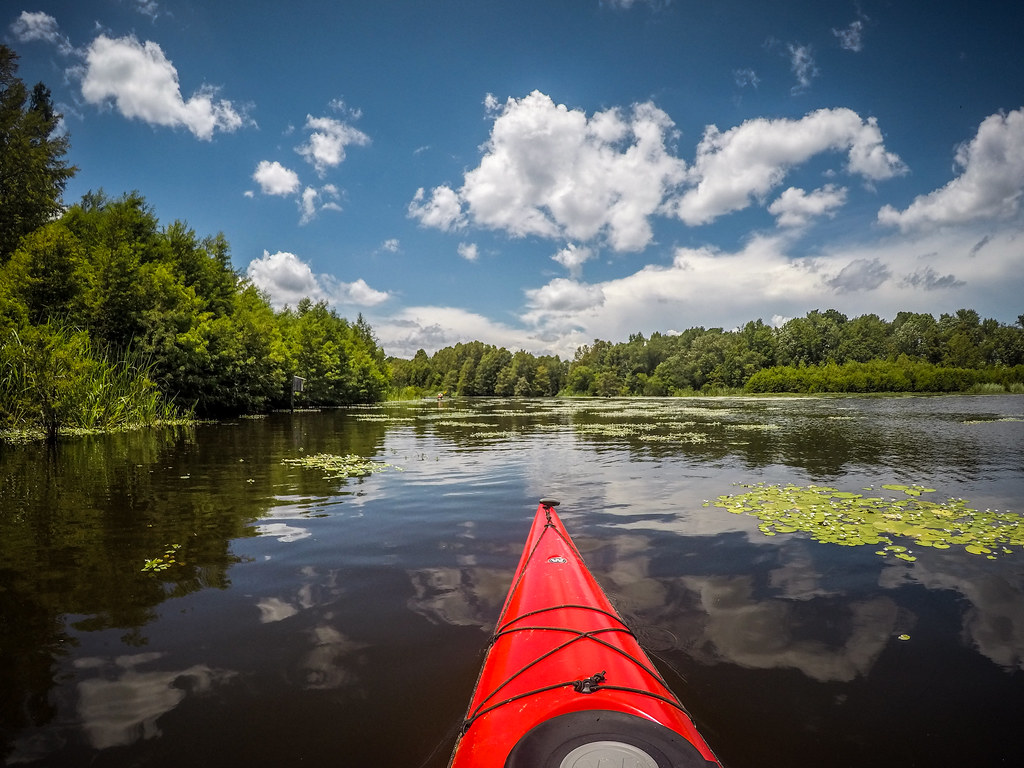 Lake Marion - Ferguson-186