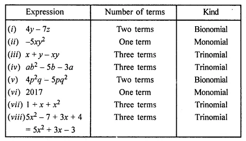 ML Aggarwal Class 7 Solutions for ICSE Maths Chapter 8 Algebraic Expressions Ex 8.1 Q13