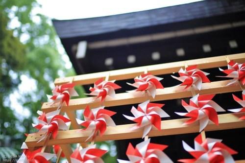 氷川神社 20190717-IMG_3354 (2)