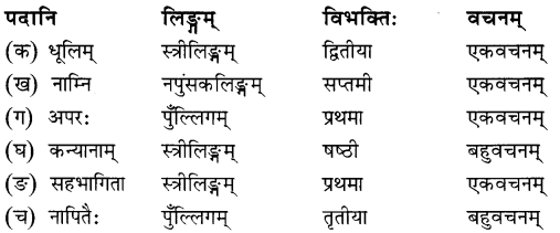 NCERT Solutions for Class 8 Sanskrit Chapter 11 सावित्री बाई फुले 2