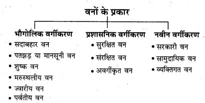 RBSE Solutions for Class 11 Indian Geography Chapter 8 भारत की प्राकृतिक वनस्पति 2