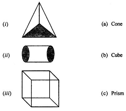 ML Aggarwal Class 7 Solutions for ICSE Maths Chapter 15 Visualising Solid Shapes Ex 15.1 Q1