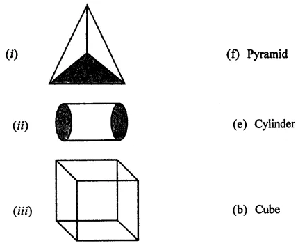 ML Aggarwal Class 7 Solutions for ICSE Maths Chapter 15 Visualising Solid Shapes Ex 15.1 Q1.2