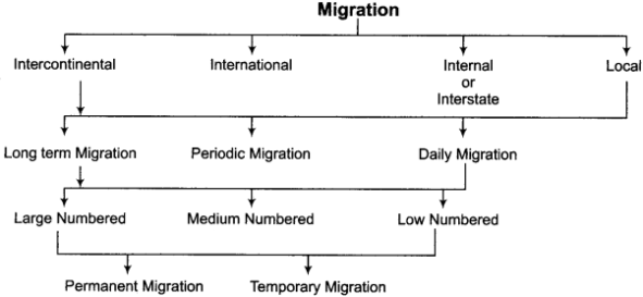 RBSE Solutions for Class 12 Geography Chapter 5 Population Migration and Human Development 3