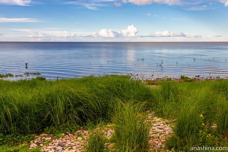 Озеро Ильмень, Коростынь, Новгородская область