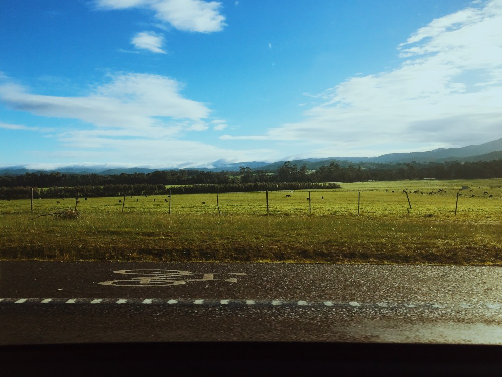 28 June 2016: Drive back to civilization | Coldstream, Victoria