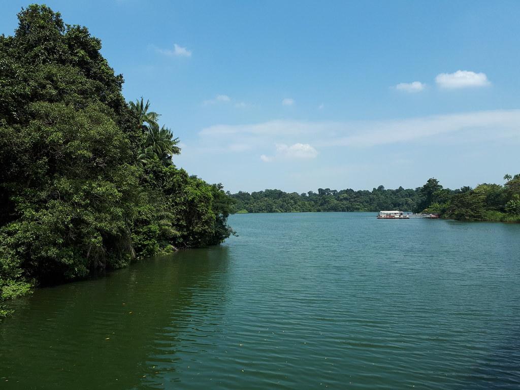 City Girl City Stories: River Safari
