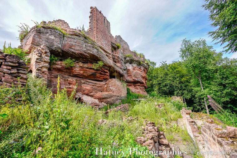 Chateaux Forts d'Alsace_Le Schoeneck-20190722-032