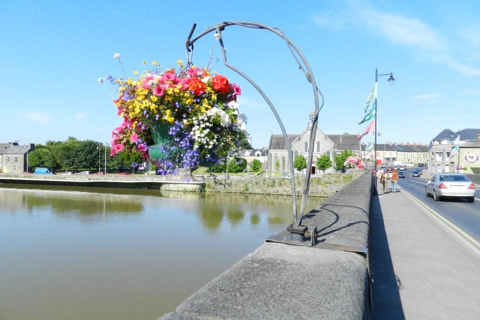 Iglesia de San Munchin y Santa Leila Flora flores Limerick Republica de Irlanda 25