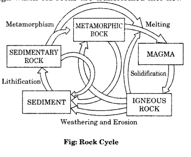 Class 11 Geography NCERT Solutions Chapter 5 Minerals and