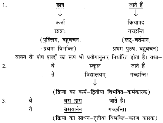 NCERT Solutions for Class 8 Sanskrit Chapter 8 अनुवादः 1