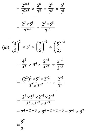 ICSE Mathematics Class 8 Solutions Chapter 2 Exponents and Powers Ex 2.1 Q6.2