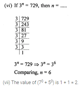 Maths Questions for Class 8 ICSE With Answers Chapter 2 Exponents and Powers Objective Type Questions Q1.1