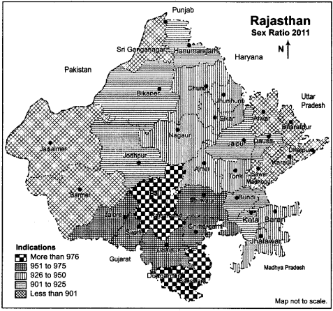 RBSE Solutions for Class 12 Geography Chapter 25 Rajasthan Population and Tribes 9