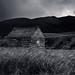 Montana Barn Black and White