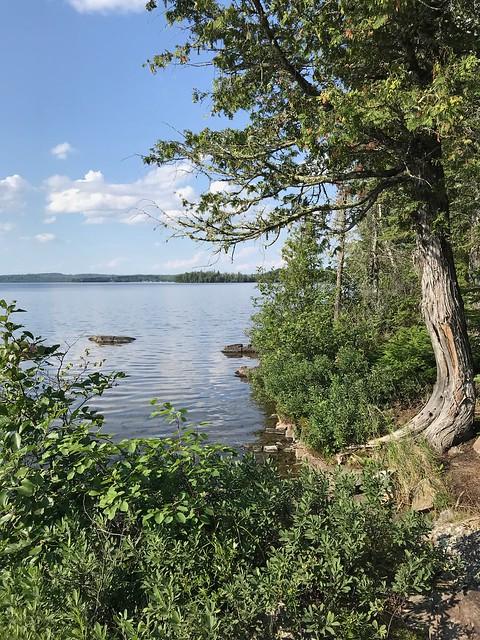 Aaron - Thunder Lake
