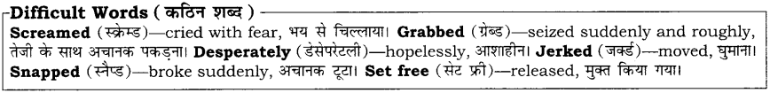 High Maharajah RBSE Class 10 English Notes 15
