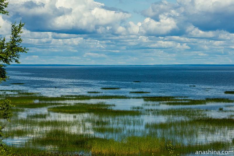 Финский залив, Ленинградская область