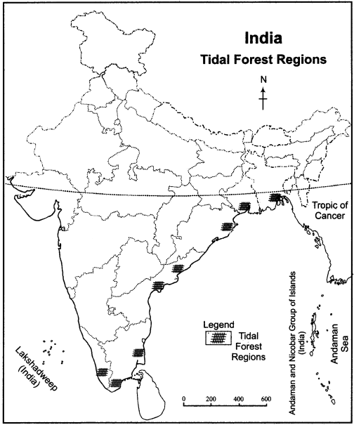 RBSE Solutions for Class 11 Indian Geography Chapter 8 Natural Vegetation of India 5