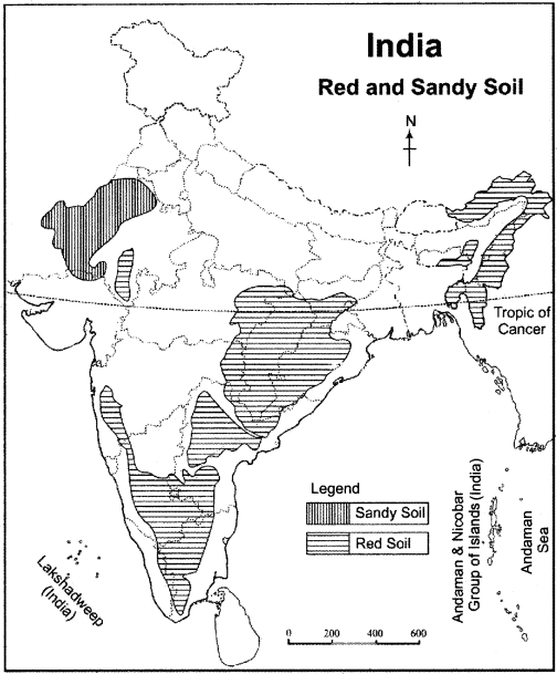 RBSE Solutions for Class 11 Indian Geography Chapter 9 Soil of India 1