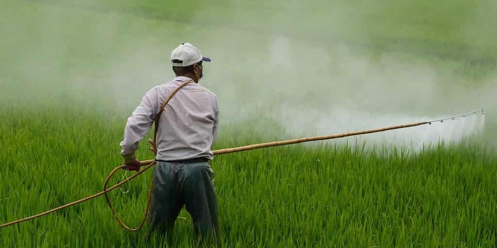 horloge-biologie-des-plantes-meilleur-moment-appliquer-herbicides