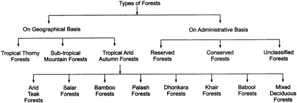 RBSE Solutions for Class 11 Indian Geography Chapter 13 Rajasthan Climate, Vegetation and Soil 2