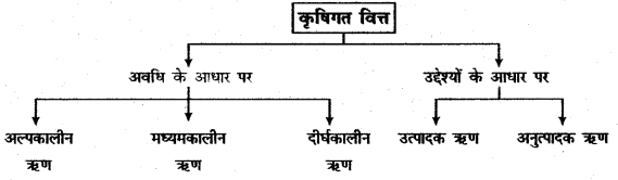 RBSE Solutions for Class 11 Economics Chapter 17 कृषिगत विकास 3