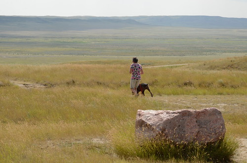 Grasslands National Park West Block - Linda and Hector in the grass by the bison  rub rock