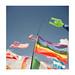 FILM - Flags-2