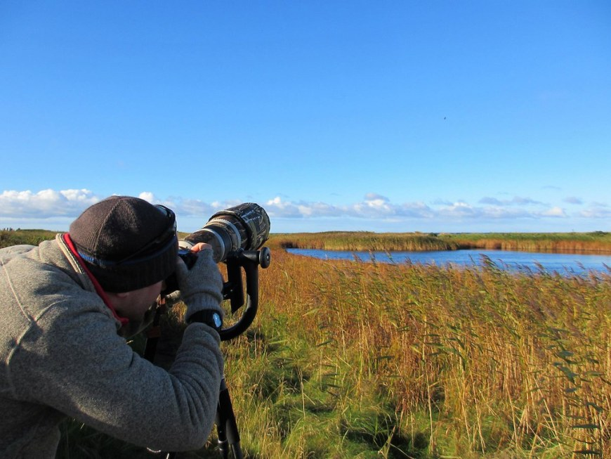 A man looking through his camera with a telephoto lens, near a lake
