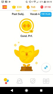Just finished the Spanish course on Duolingo