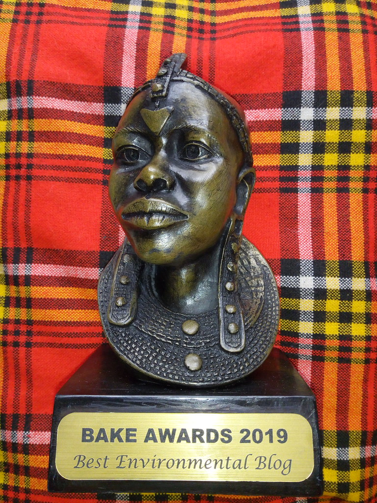 BAKE Awards 2019