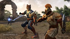 Dragonhold_Boss_Monk_combat