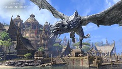 Dragonhold_Dragons_Senchal