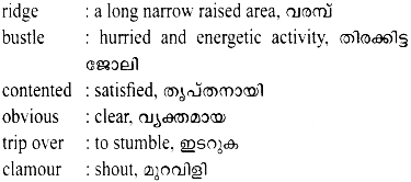 HSSLive Plus Two English Textbook Answers Unit 4 Chapter 2 Rice (Poem) 5